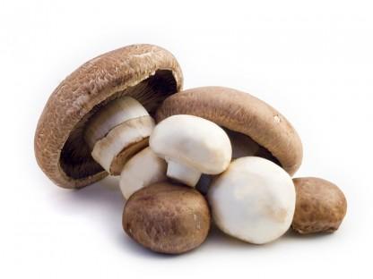 Острожно, грибы!