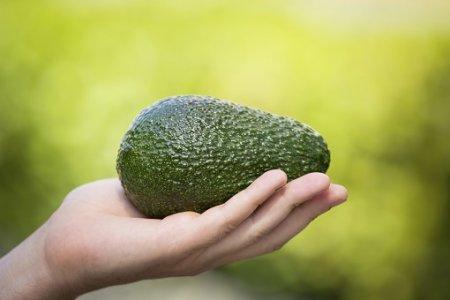 Семь веских причин полюбить авокадо.